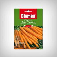 Seminte Morcov Baby Carrot