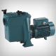 Pompa pentru piscina NMPM 50 12 GE