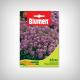 Seminte Alyssum violet pitic