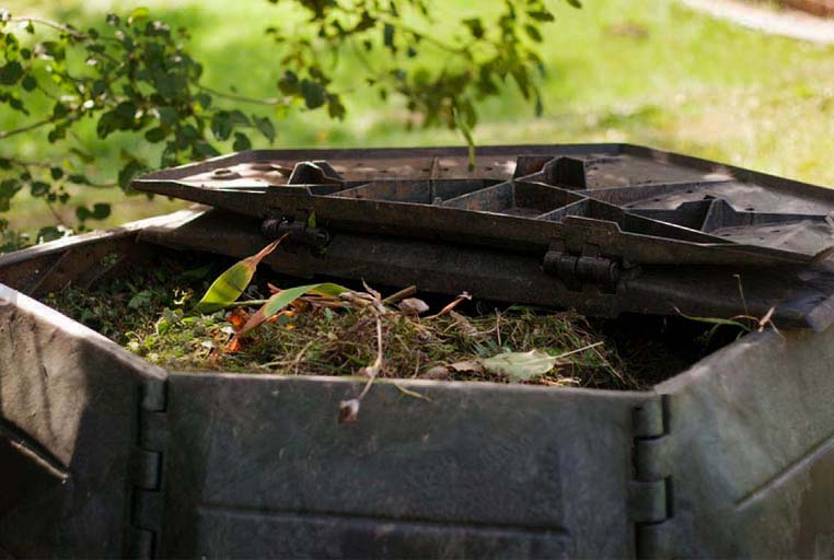De ce si cum sa transformam resturile vegetale din gradina in compost?